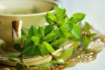 filizanka-zielonej-herbaty
